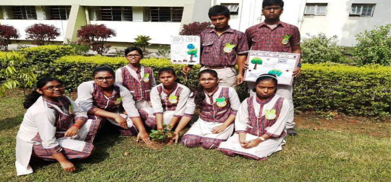 Plantation drive by students of Environmental club
